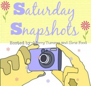 Saturday Snapshots- Join us while we learn Food Photography