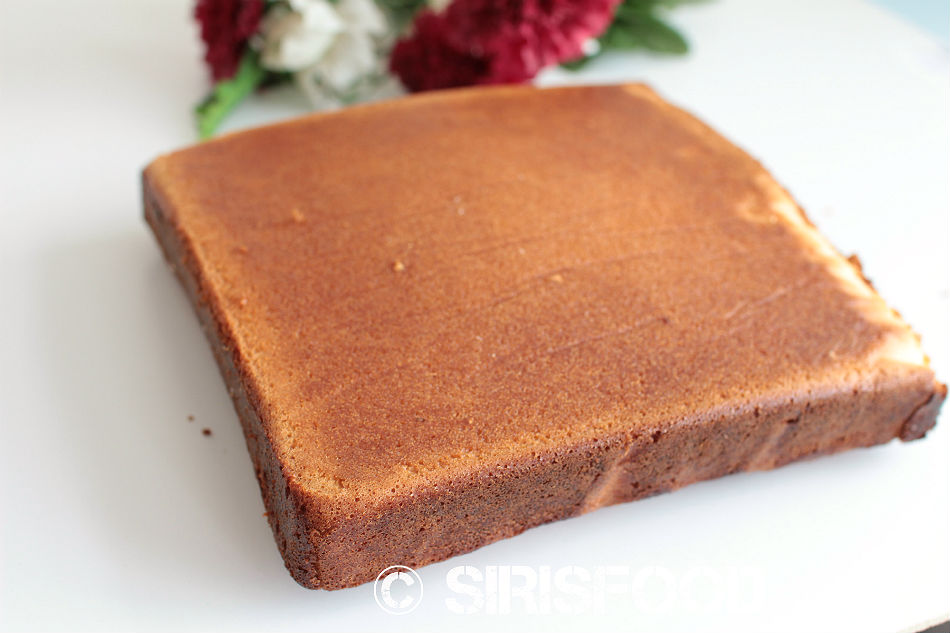Chocolate Square Sponge Cake Recipe